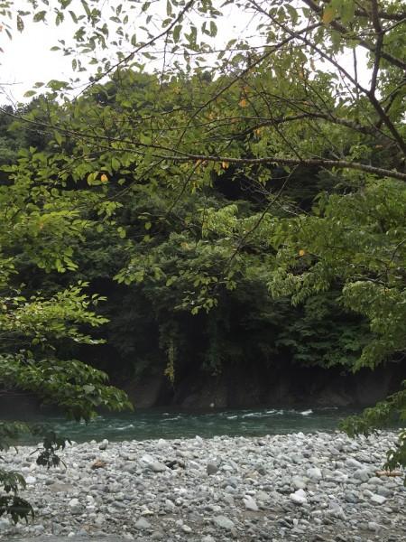 写真 2016-09-04 11 12 48
